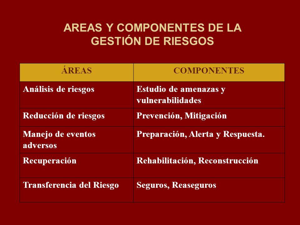 AREAS Y COMPONENTES DE LA GESTIÓN DE RIESGOS ÁREASCOMPONENTES Análisis de riesgosEstudio de amenazas y vulnerabilidades Reducción de riesgosPrevención