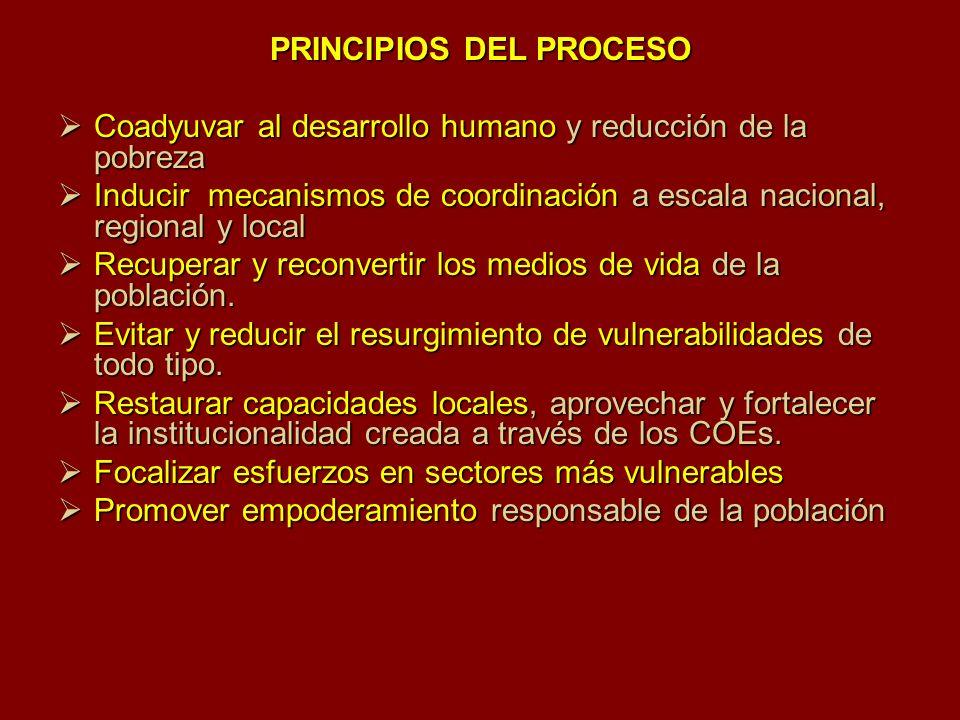 PRINCIPIOS DEL PROCESO Coadyuvar al desarrollo humano y reducción de la pobreza Coadyuvar al desarrollo humano y reducción de la pobreza Inducir mecan