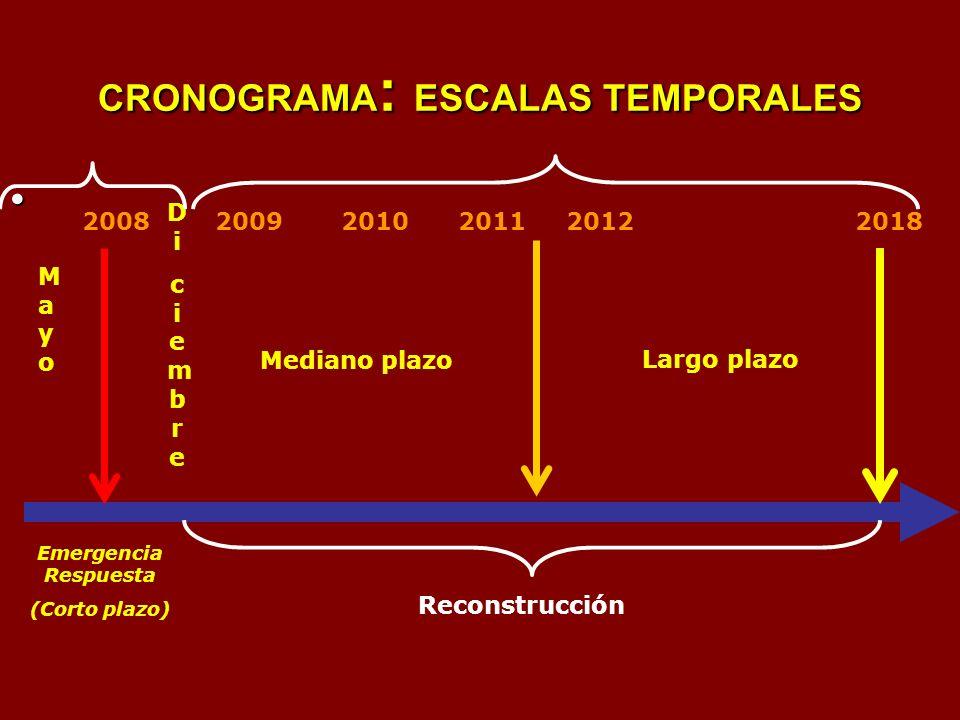 CRONOGRAMA : ESCALAS TEMPORALES Emergencia Respuesta (Corto plazo) Mediano plazo Largo plazo MayoMayo DiciembreDiciembre 2008 2009 2010 2011 2012 2018