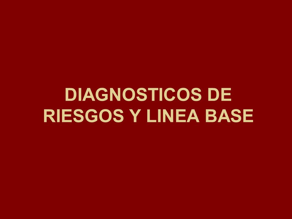 DIAGNOSTICOS DE RIESGOS Y LINEA BASE