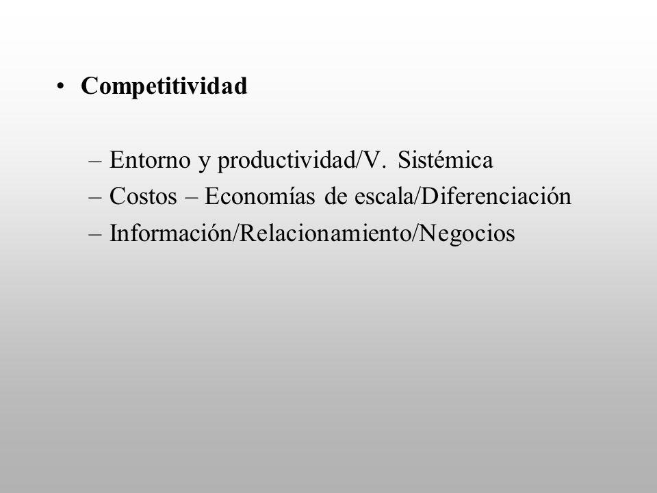 Competitividad –Entorno y productividad/V. Sistémica –Costos – Economías de escala/Diferenciación –Información/Relacionamiento/Negocios