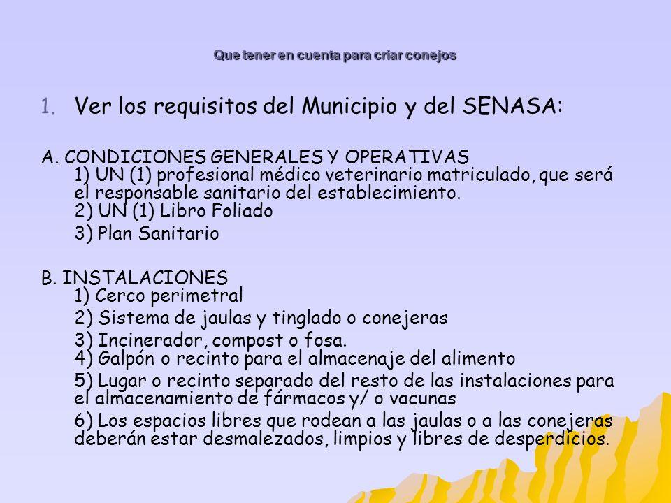 Que tener en cuenta para criar conejos 1. 1. Ver los requisitos del Municipio y del SENASA: A. CONDICIONES GENERALES Y OPERATIVAS 1) UN (1) profesiona