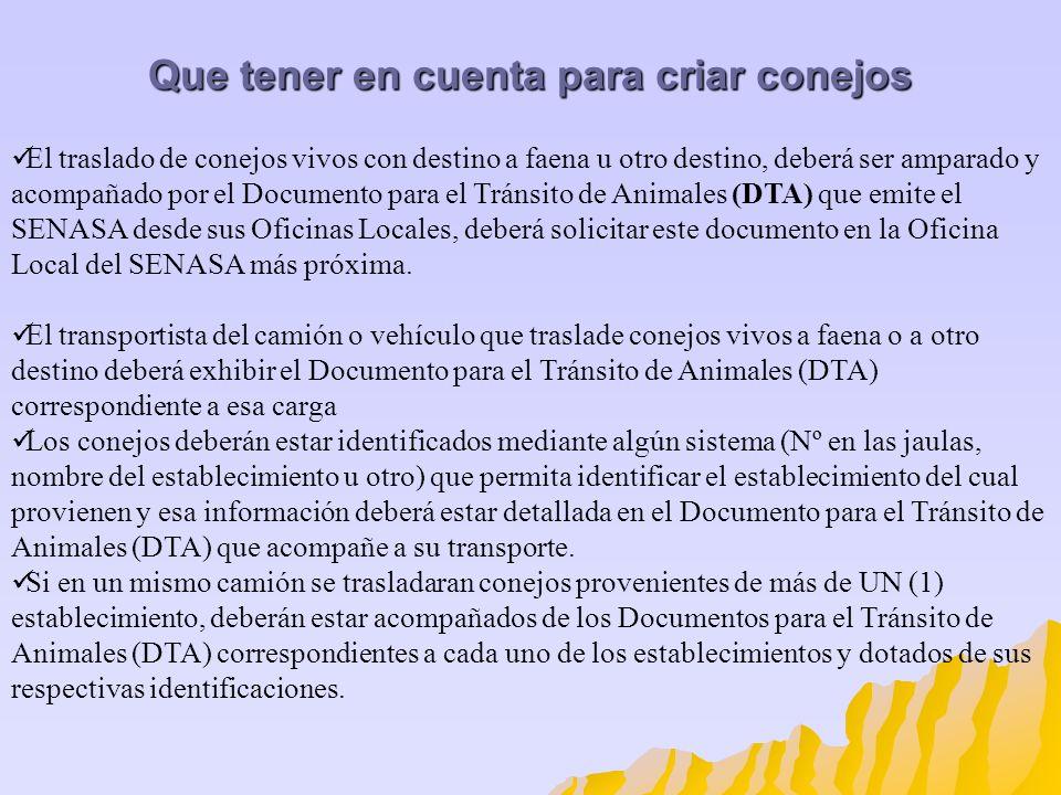 El traslado de conejos vivos con destino a faena u otro destino, deberá ser amparado y acompañado por el Documento para el Tránsito de Animales (DTA)
