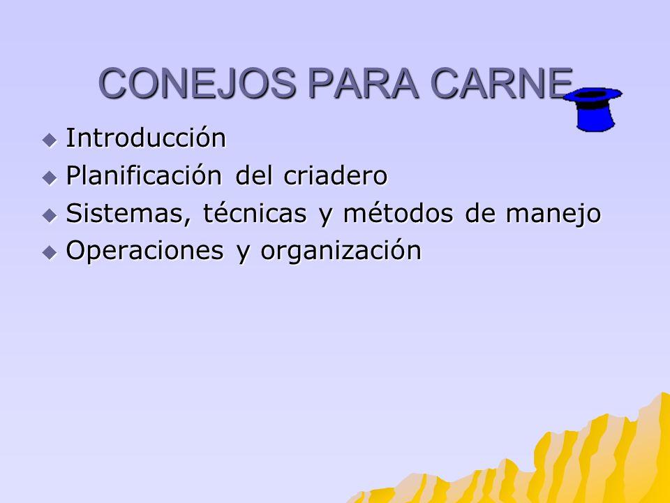 CONEJOS PARA CARNE Introducción Introducción Planificación del criadero Planificación del criadero Sistemas, técnicas y métodos de manejo Sistemas, té