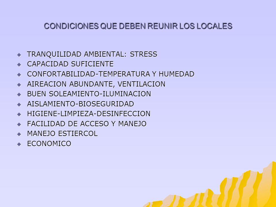 CONDICIONES QUE DEBEN REUNIR LOS LOCALES TRANQUILIDAD AMBIENTAL: STRESS TRANQUILIDAD AMBIENTAL: STRESS CAPACIDAD SUFICIENTE CAPACIDAD SUFICIENTE CONFO