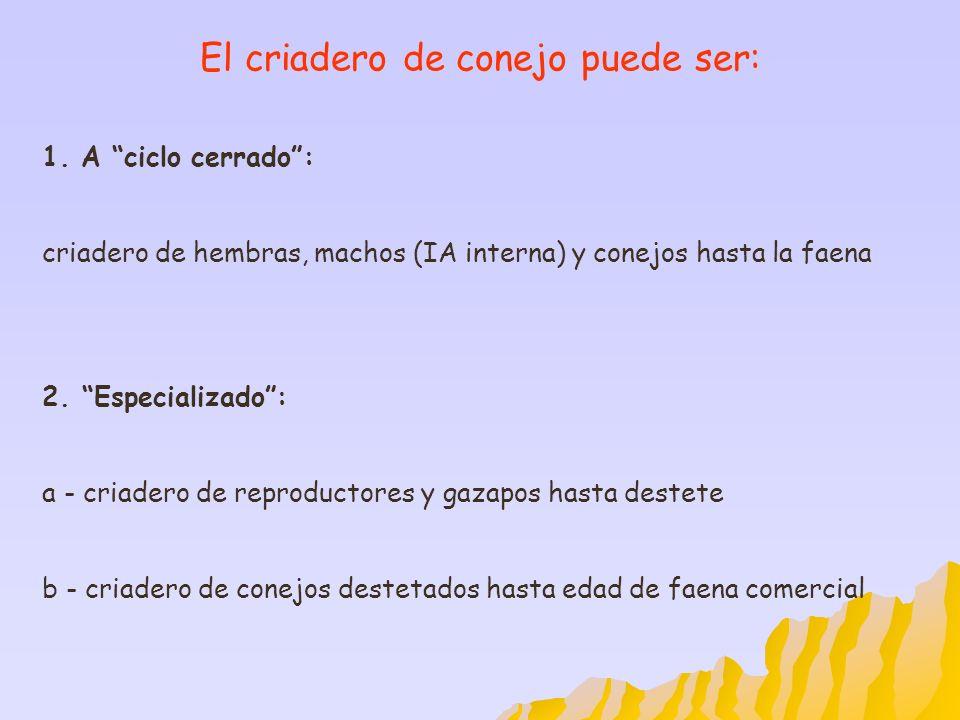El criadero de conejo puede ser: 1. A ciclo cerrado: criadero de hembras, machos (IA interna) y conejos hasta la faena 2.Especializado: a - criadero d