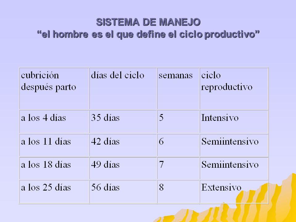 SISTEMA DE MANEJO el hombre es el que define el ciclo productivo