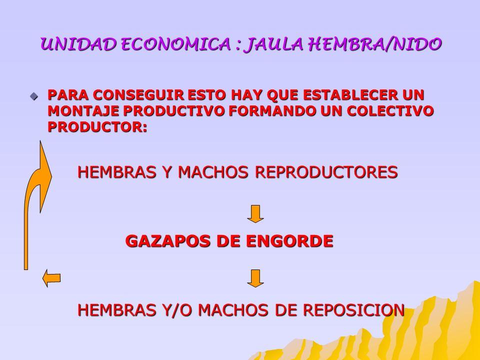 UNIDAD ECONOMICA : JAULA HEMBRA/NIDO PARA CONSEGUIR ESTO HAY QUE ESTABLECER UN MONTAJE PRODUCTIVO FORMANDO UN COLECTIVO PRODUCTOR: PARA CONSEGUIR ESTO