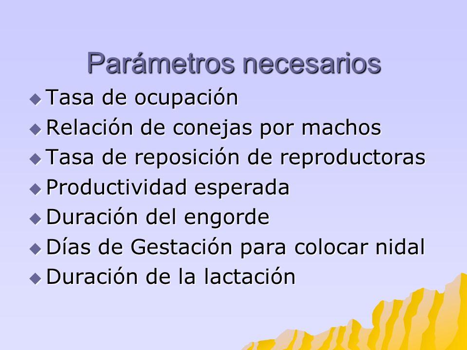 Parámetros necesarios Tasa de ocupación Tasa de ocupación Relación de conejas por machos Relación de conejas por machos Tasa de reposición de reproduc