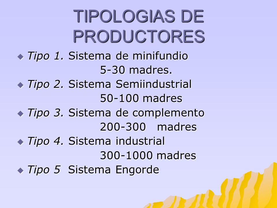 TIPOLOGIAS DE PRODUCTORES Tipo 1. Sistema de minifundio Tipo 1. Sistema de minifundio 5-30 madres. Tipo 2. Sistema Semiindustrial Tipo 2. Sistema Semi