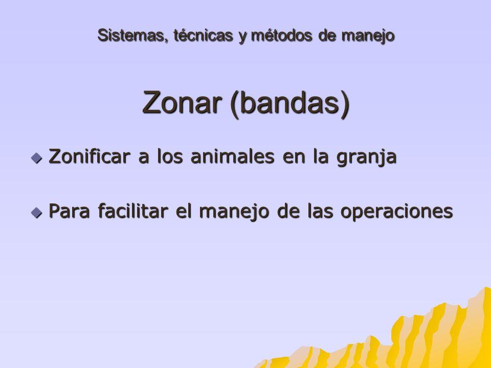 Sistemas, técnicas y métodos de manejo Zonar (bandas) Zonificar a los animales en la granja Zonificar a los animales en la granja Para facilitar el ma