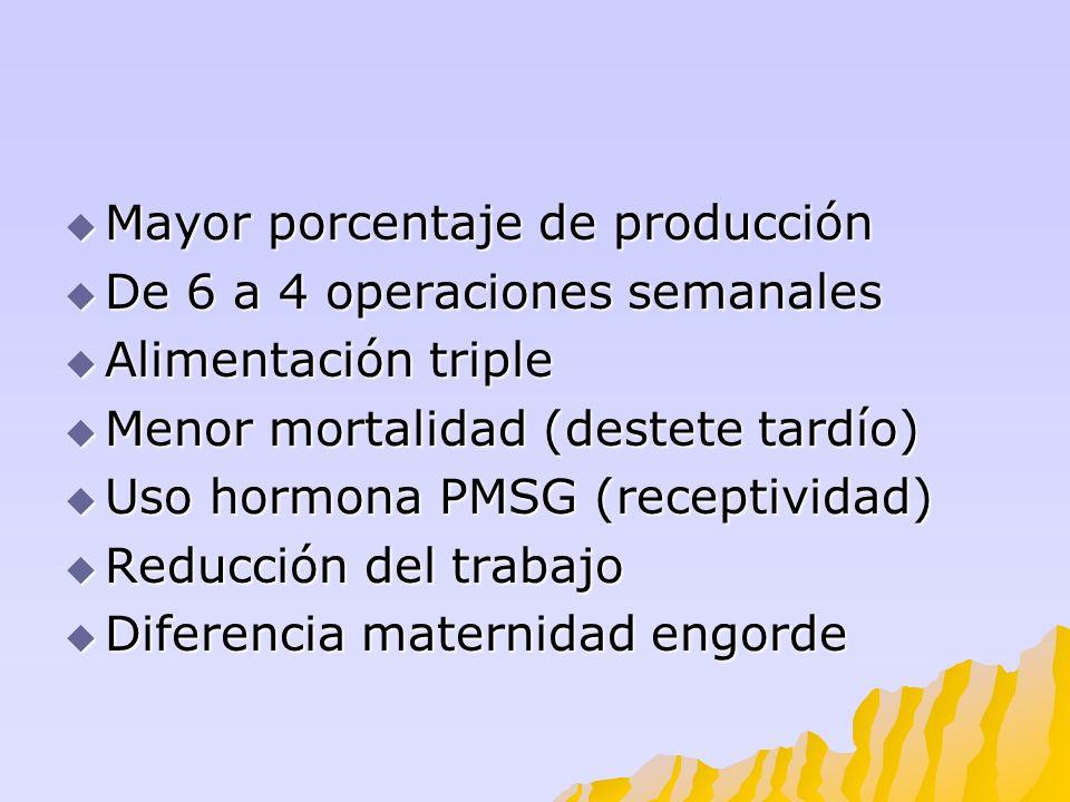 Mayor porcentaje de producción Mayor porcentaje de producción De 6 a 4 operaciones semanales De 6 a 4 operaciones semanales Alimentación triple Alimen