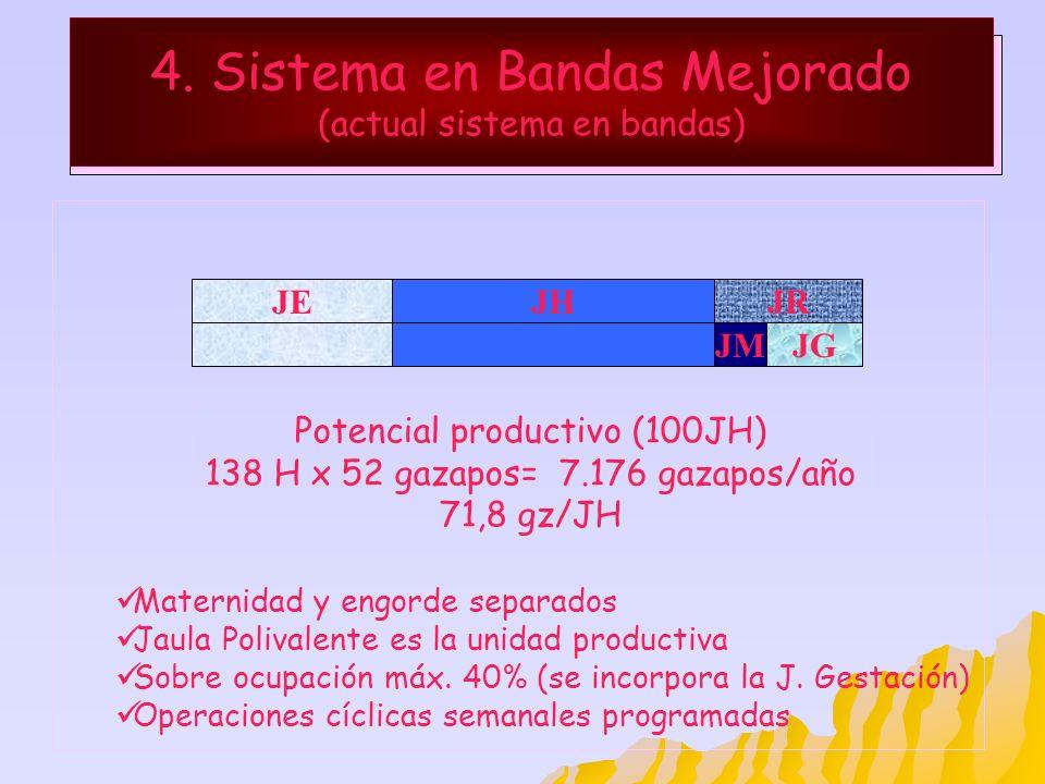 4. Sistema en Bandas Mejorado (actual sistema en bandas) JHJR Maternidad y engorde separados Jaula Polivalente es la unidad productiva Sobre ocupación