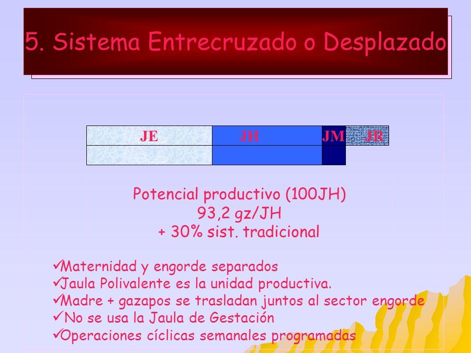 5. Sistema Entrecruzado o Desplazado JHJR Maternidad y engorde separados Jaula Polivalente es la unidad productiva. Madre + gazapos se trasladan junto