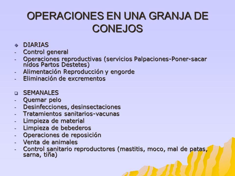 OPERACIONES EN UNA GRANJA DE CONEJOS DIARIAS DIARIAS - Control general - Operaciones reproductivas (servicios Palpaciones-Poner-sacar nidos Partos Des