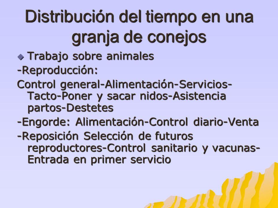 Distribución del tiempo en una granja de conejos Trabajo sobre animales Trabajo sobre animales-Reproducción: Control general-Alimentación-Servicios- T