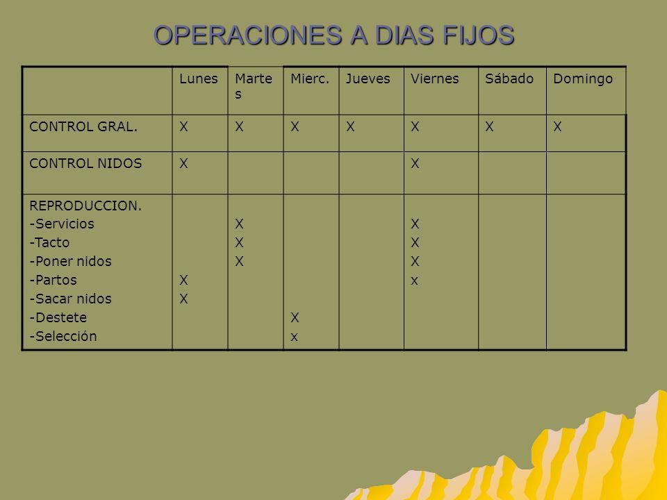 OPERACIONES A DIAS FIJOS LunesMarte s Mierc.JuevesViernesSábadoDomingo CONTROL GRAL.XXXXXXX CONTROL NIDOSXX REPRODUCCION. -Servicios -Tacto -Poner nid