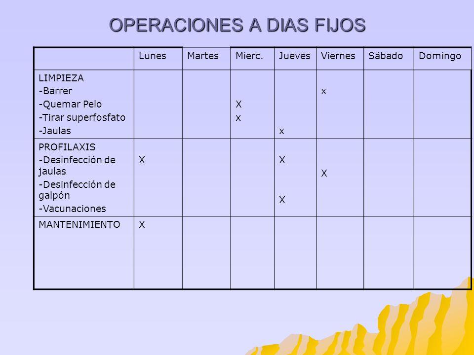 OPERACIONES A DIAS FIJOS LunesMartesMierc.JuevesViernesSábadoDomingo LIMPIEZA -Barrer -Quemar Pelo -Tirar superfosfato -Jaulas XxXx x x PROFILAXIS -De