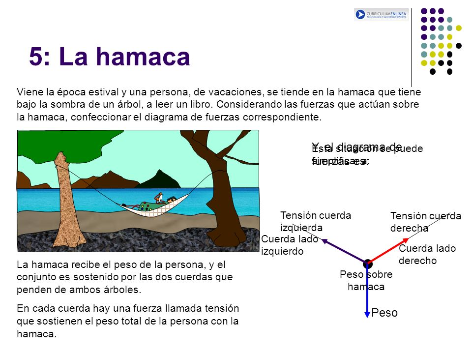 5: La hamaca Viene la época estival y una persona, de vacaciones, se tiende en la hamaca que tiene bajo la sombra de un árbol, a leer un libro. Consid