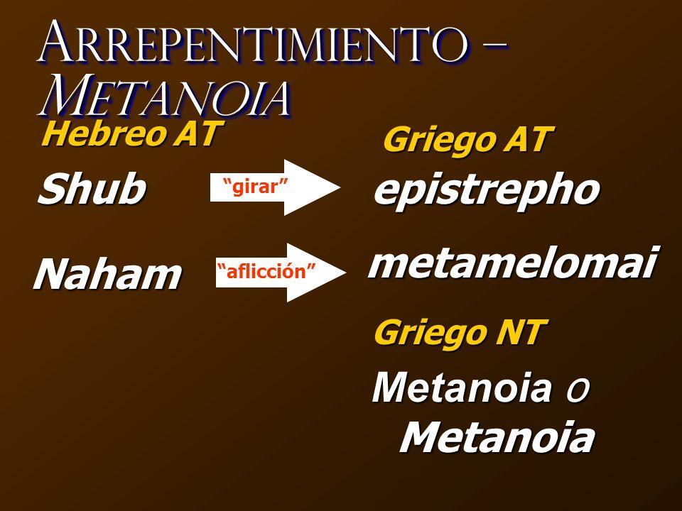 ¿C ómo es que el O ccidente perdió de vista a M etanoia.