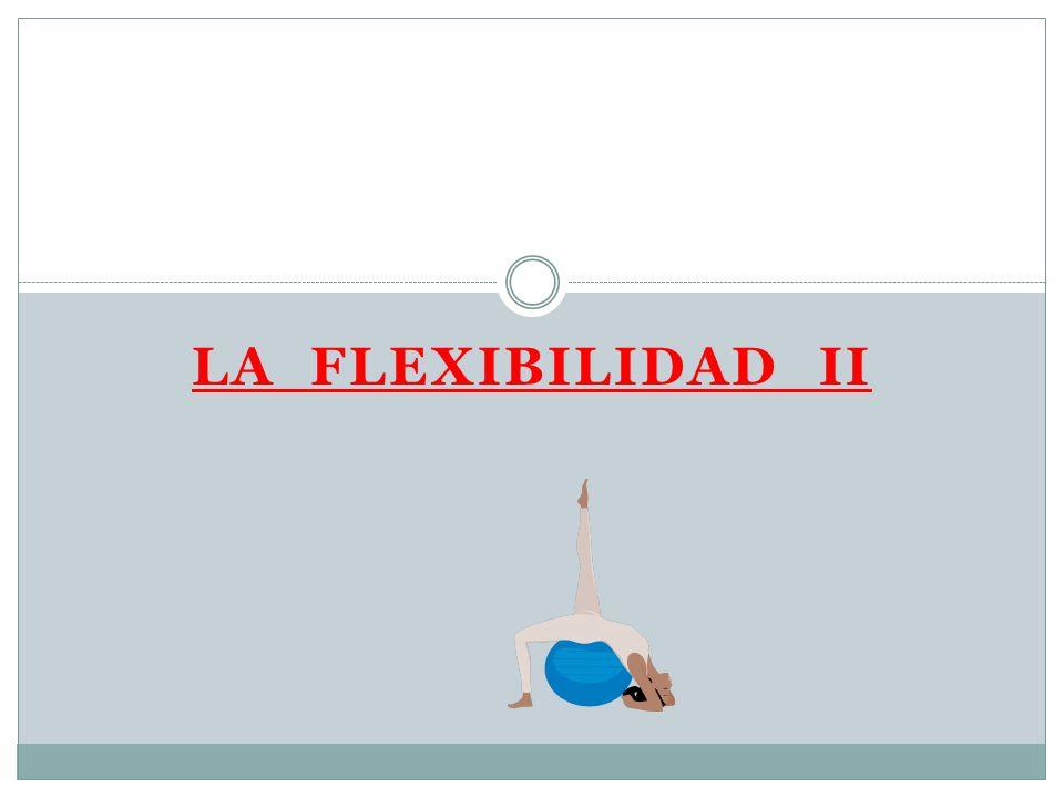 FLEXIBILIDAD Y LOS MÚSCULOS Los músculos son la parte activa de la articulación.