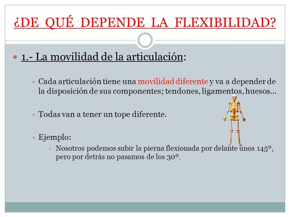 ¿DE QUÉ DEPENDE LA FLEXIBILIDAD? 1.- La movilidad de la articulación: Cada articulación tiene una movilidad diferente y va a depender de la disposició
