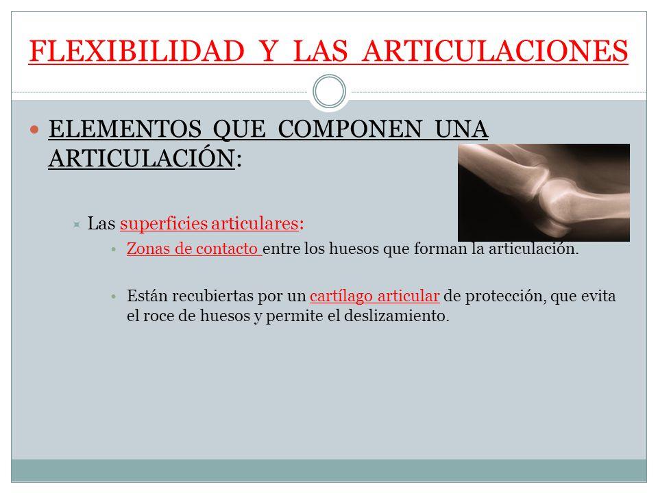 FLEXIBILIDAD Y LAS ARTICULACIONES ELEMENTOS QUE COMPONEN UNA ARTICULACIÓN: Las superficies articulares: Zonas de contacto entre los huesos que forman