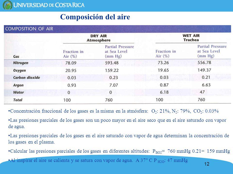12 Composición del aire Concentración fraccional de los gases es la misma en la atmósfera: O 2 : 21%, N 2 : 79%, CO 2 : 0.03% Las presiones parciales