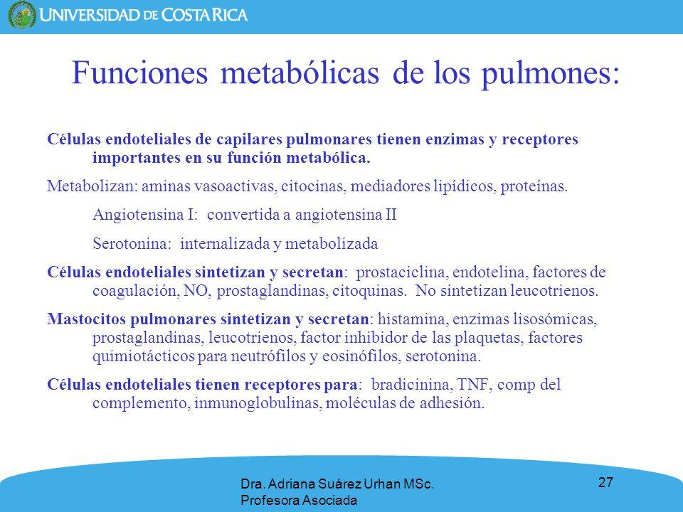 27 Dra. Adriana Suárez Urhan MSc. Profesora Asociada Funciones metabólicas de los pulmones: Células endoteliales de capilares pulmonares tienen enzima