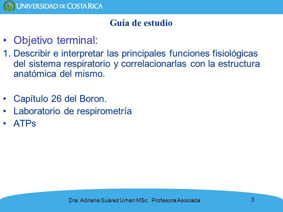 3 Dra. Adriana Suárez Urhan MSc. Profesora Asociada Guía de estudio Objetivo terminal: 1.Describir e interpretar las principales funciones fisiológica