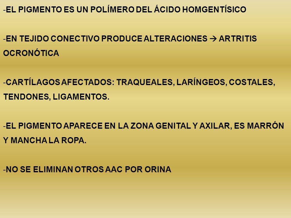 -EL PIGMENTO ES UN POLÍMERO DEL ÁCIDO HOMGENTÍSICO -EN TEJIDO CONECTIVO PRODUCE ALTERACIONES ARTRITIS OCRONÓTICA -CARTÍLAGOS AFECTADOS: TRAQUEALES, LA
