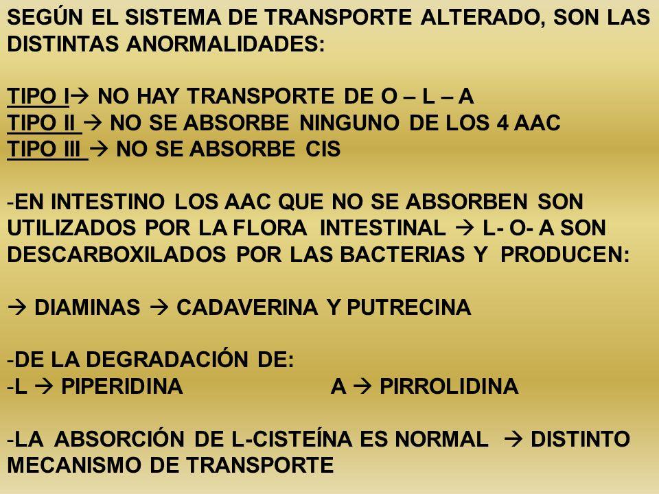 SEGÚN EL SISTEMA DE TRANSPORTE ALTERADO, SON LAS DISTINTAS ANORMALIDADES: TIPO I NO HAY TRANSPORTE DE O – L – A TIPO II NO SE ABSORBE NINGUNO DE LOS 4