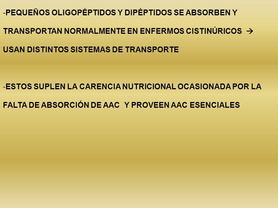 -PEQUEÑOS OLIGOPÉPTIDOS Y DIPÉPTIDOS SE ABSORBEN Y TRANSPORTAN NORMALMENTE EN ENFERMOS CISTINÚRICOS USAN DISTINTOS SISTEMAS DE TRANSPORTE -ESTOS SUPLE