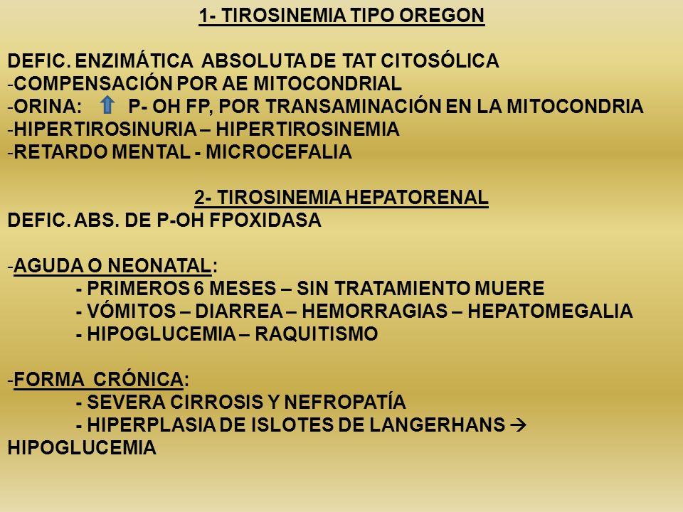 1- TIROSINEMIA TIPO OREGON DEFIC. ENZIMÁTICA ABSOLUTA DE TAT CITOSÓLICA -COMPENSACIÓN POR AE MITOCONDRIAL -ORINA: P- OH FP, POR TRANSAMINACIÓN EN LA M