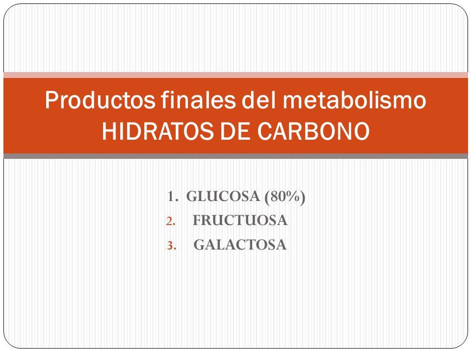 1. GLUCOSA (80%) 2. FRUCTUOSA 3. GALACTOSA Productos finales del metabolismo HIDRATOS DE CARBONO