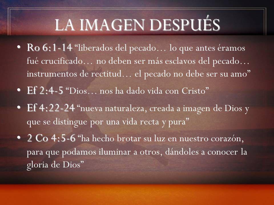 LA IMAGEN DESPUÉS Ro 6:1-14Ro 6:1-14 liberados del pecado… lo que antes éramos fué crucificado… no deben ser más esclavos del pecado… instrumentos de