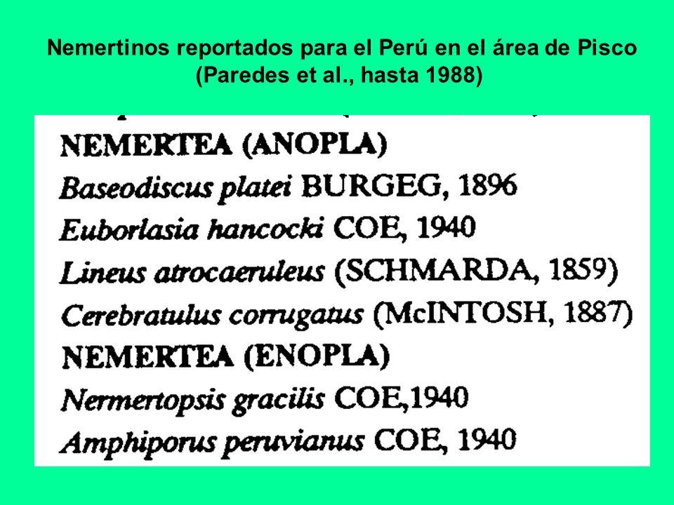 Nemertinos reportados para el Perú en el área de Pisco (Paredes et al., hasta 1988)