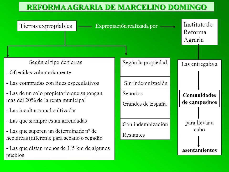 REFORMA AGRARIA DE MARCELINO DOMINGO Expropiación realizada por Instituto de Reforma Agraria Tierras expropiables Según el tipo de tierras - Ofrecidas