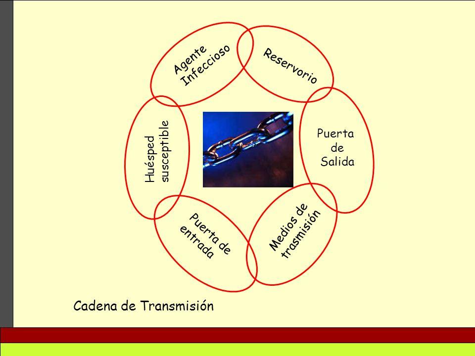 Agente Infeccioso Reservorio Puerta de Salida Medios de trasmisión Puerta de entrada Huésped susceptible Cadena de Transmisión