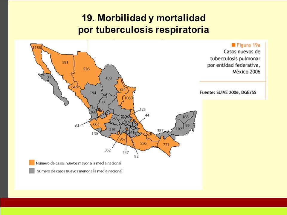 19. Morbilidad y mortalidad por tuberculosis respiratoria