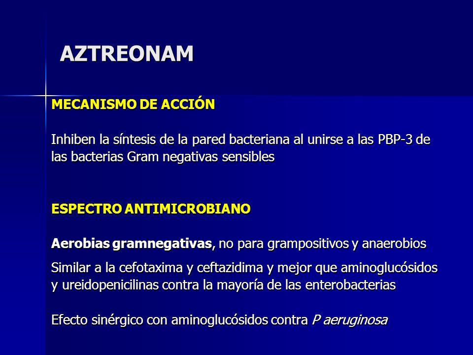 AZTREONAM MECANISMO DE ACCIÓN Inhiben la síntesis de la pared bacteriana al unirse a las PBP-3 de las bacterias Gram negativas sensibles ESPECTRO ANTI