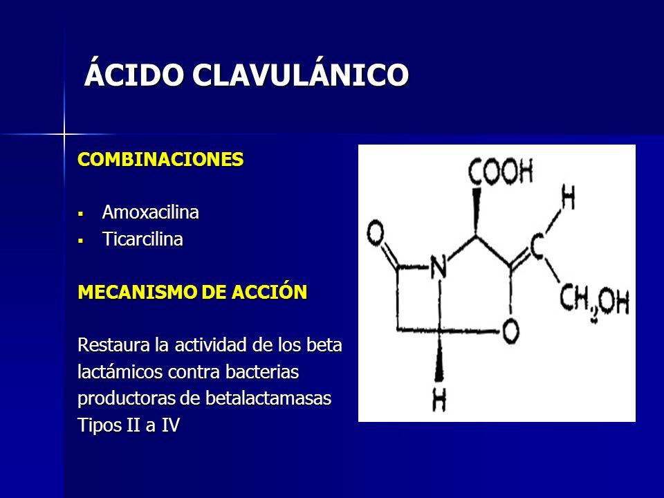ÁCIDO CLAVULÁNICO COMBINACIONES Amoxacilina Amoxacilina Ticarcilina Ticarcilina MECANISMO DE ACCIÓN Restaura la actividad de los beta lactámicos contr