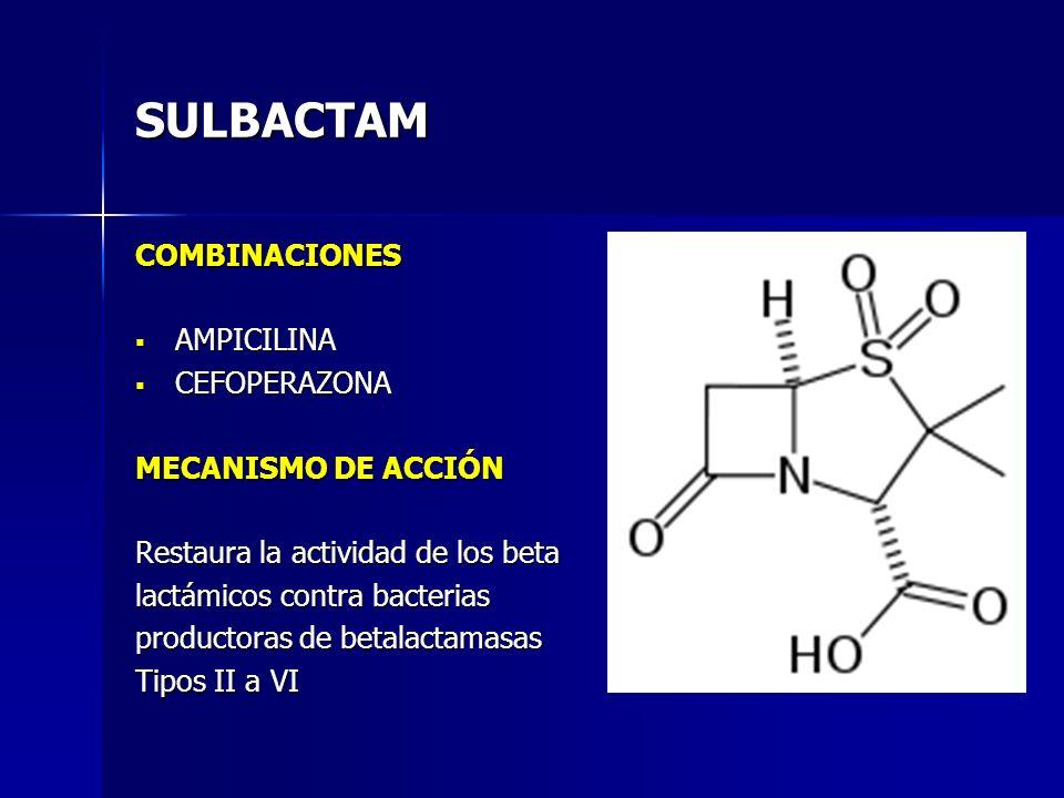 SULBACTAM COMBINACIONES AMPICILINA AMPICILINA CEFOPERAZONA CEFOPERAZONA MECANISMO DE ACCIÓN Restaura la actividad de los beta lactámicos contra bacter