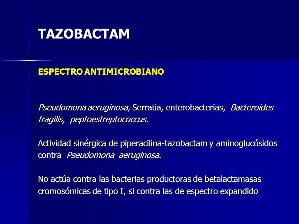 TAZOBACTAM ESPECTRO ANTIMICROBIANO Pseudomona aeruginosa, Serratia, enterobacterias, Bacteroides fragilis, peptoestreptococcus. Actividad sinérgica de