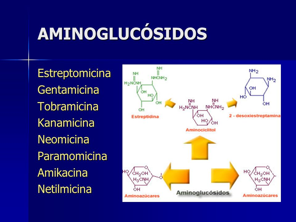 AMINOGLUCÓSIDOS EstreptomicinaGentamicinaTobramicinaKanamicinaNeomicinaParamomicinaAmikacinaNetilmicina