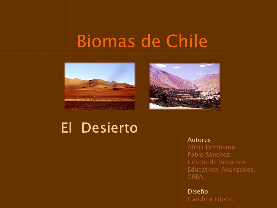 Biomas de Chile El Desierto Autores Alicia Hoffmann. Pablo Sánchez. Centro de Recursos Educativos Avanzados, CREA. Diseño Carolina López.
