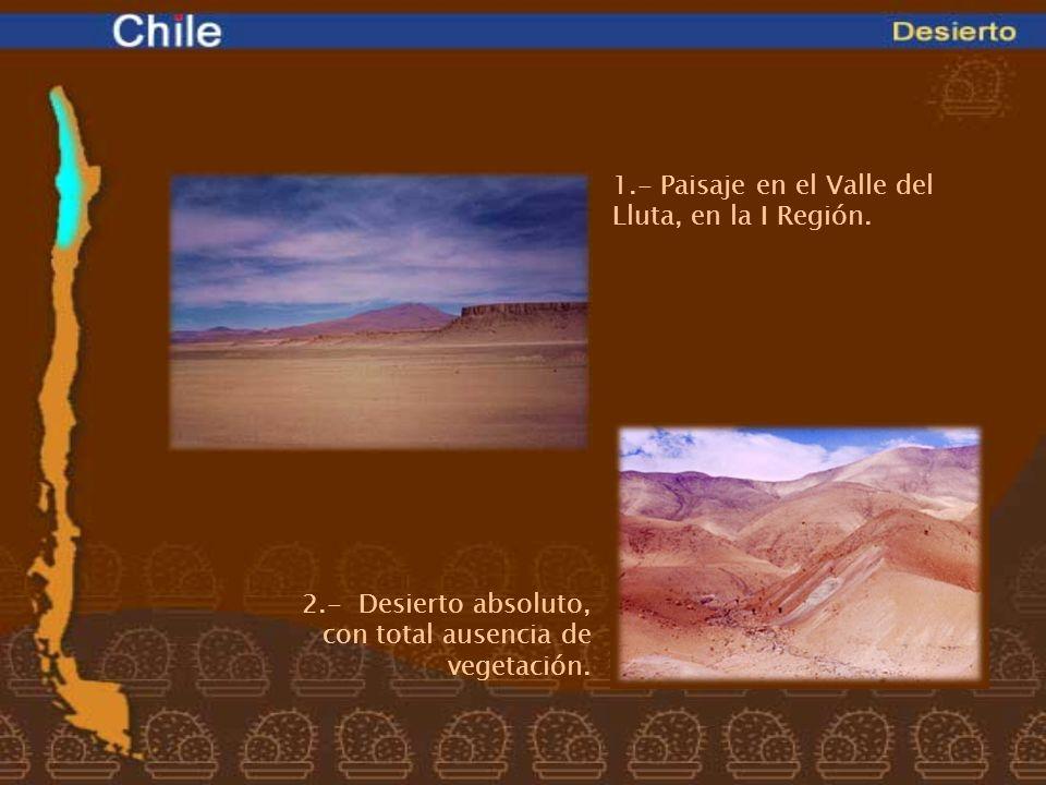 1.- Paisaje en el Valle del Lluta, en la I Región. 2.- Desierto absoluto, con total ausencia de vegetación.