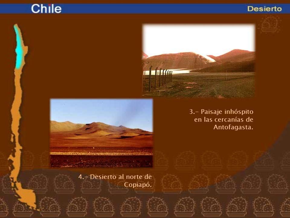 4.- Desierto al norte de Copiapó. 3.- Paisaje inhóspito en las cercanías de Antofagasta.