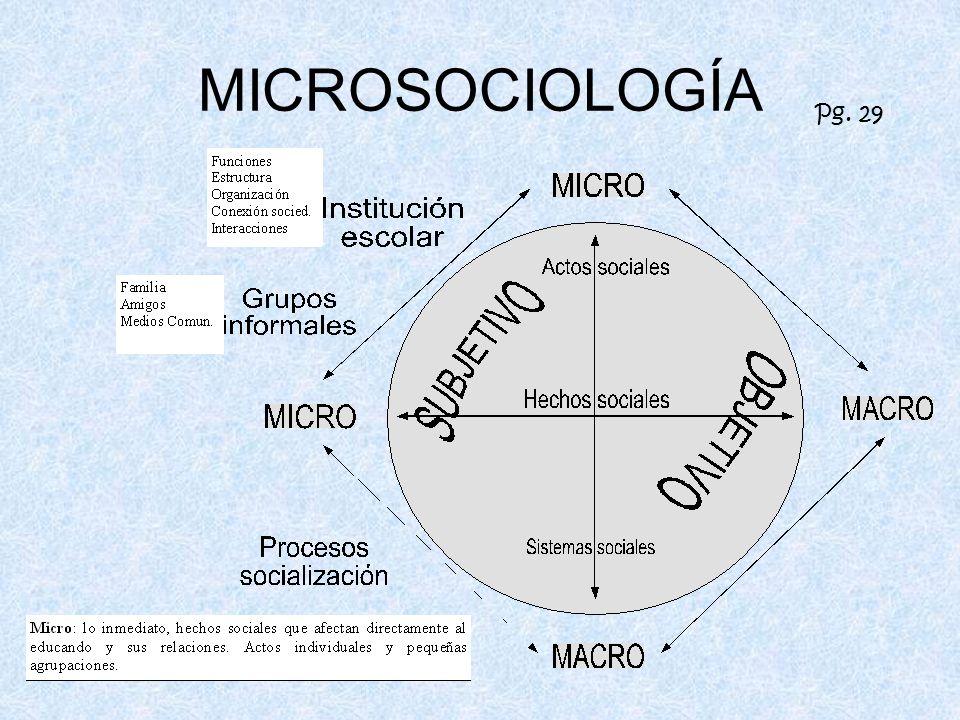 MICROSOCIOLOGÍA Pg. 29