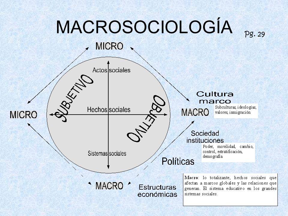 MACROSOCIOLOGÍA Pg. 29